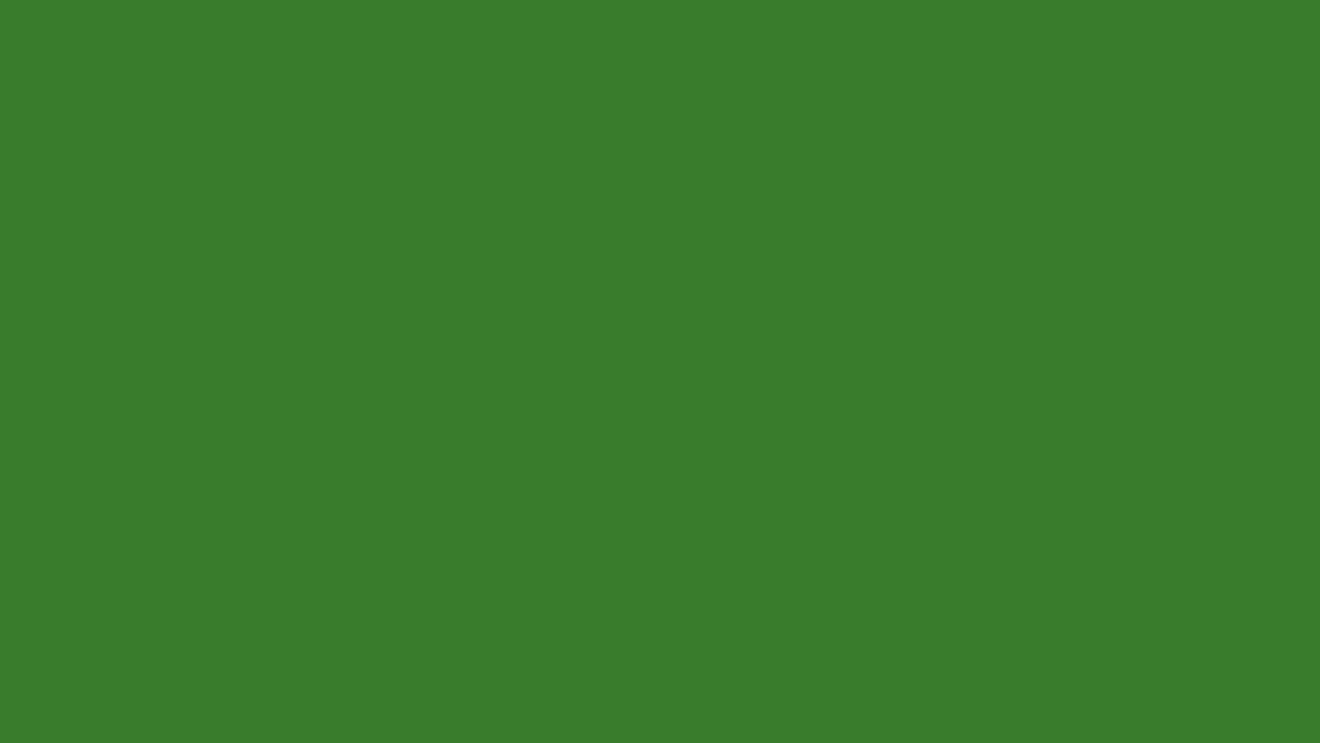 plain_vmware_green2