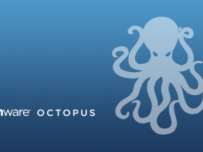 octopus-desktop-background